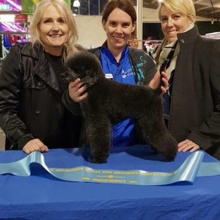 Candace Winning Dog Grooming Award